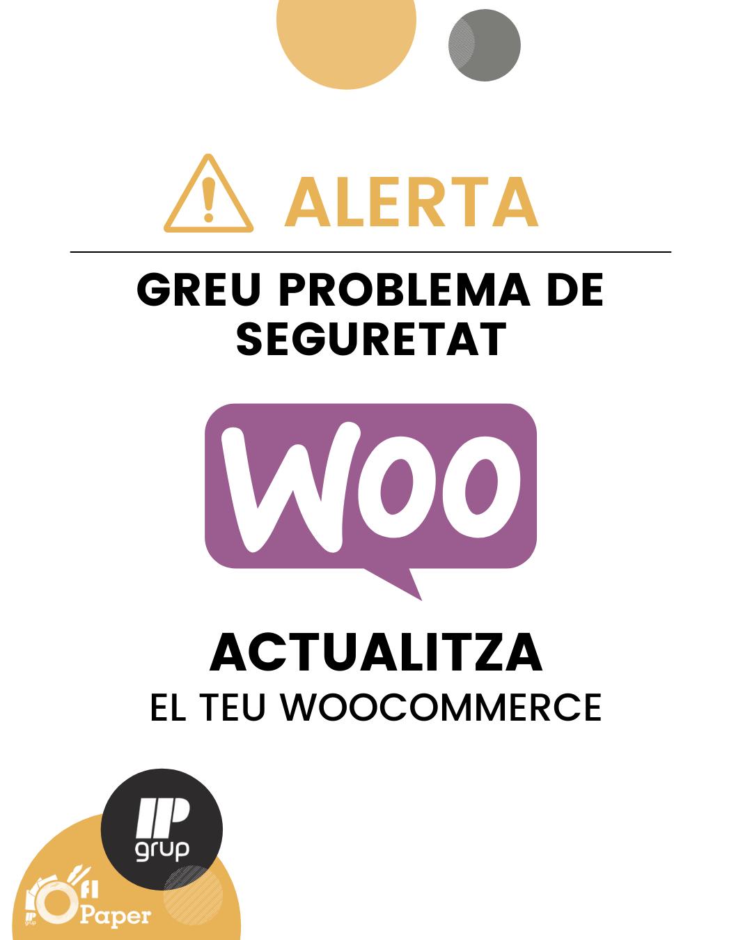 Problema de seguretat WooCommerce, IPGrup